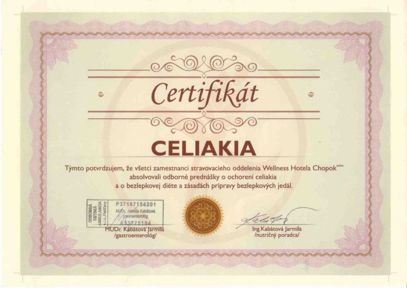CERTIFICATE OF TRAINING ON GLUTEN FREE MEALS PREPARATION